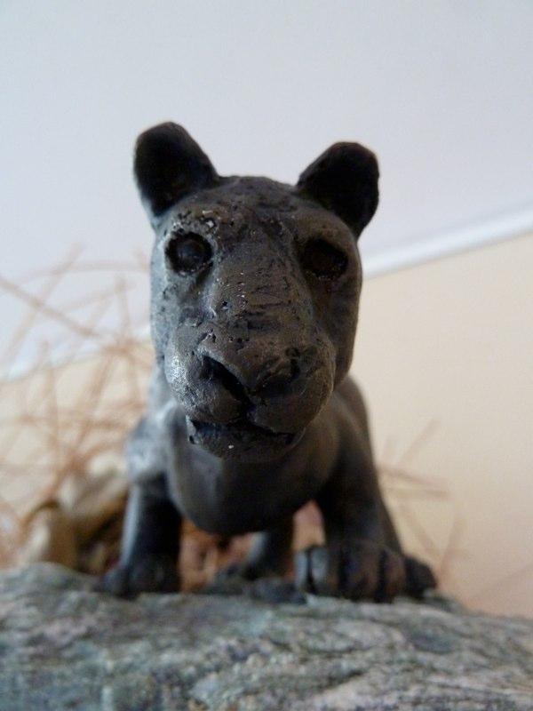 Cougar 4